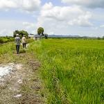 Đất khai hoang từ năm 2003 bị thu hồi có được bồi thường?